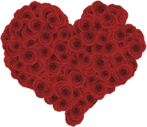 heart-3076775__340.png